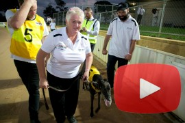 2017 Group Two Topcat Video Production Traralgon Cup