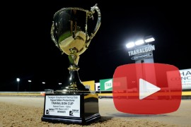 VIDEO: Traralgon Cup insights