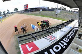 The Inside Word – 2018 Traralgon Cup Heats