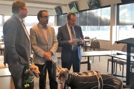 Greyhound racing on track for return to Traralgon